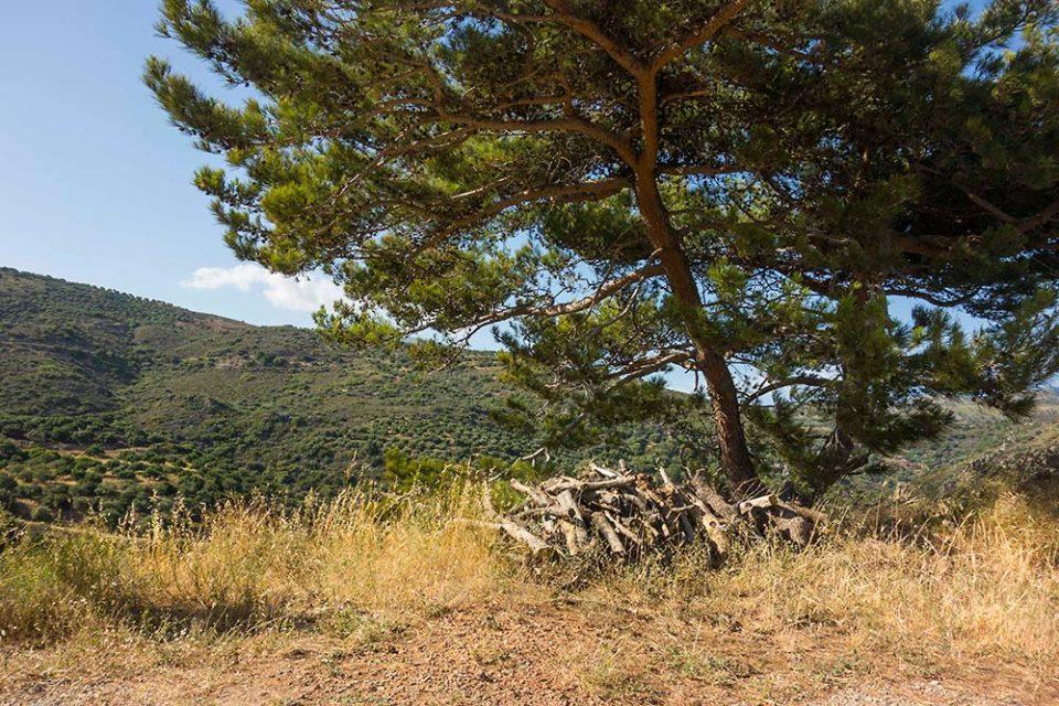 julian, konczak, photography, crete, the pursuit of paradise